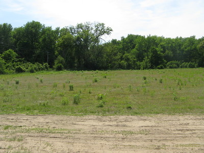 Custer Park Residential Lots & Land For Sale: Lot 1 S Irish Lane