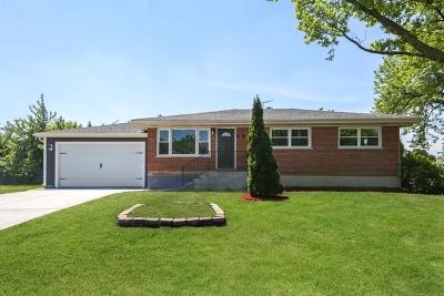 Elmhurst Single Family Home New: 292 East Fullerton Avenue
