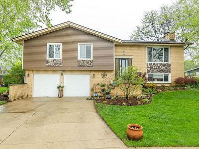 Schaumburg Single Family Home New: 1073 Oakwood Court