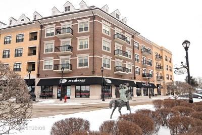 Palatine Condo/Townhouse New: 24 West Station Street #306W