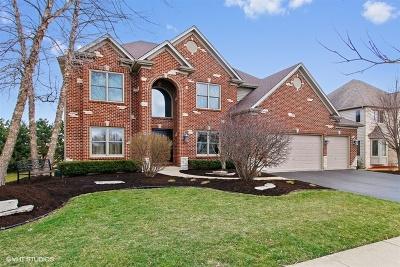Naperville IL Single Family Home New: $459,900