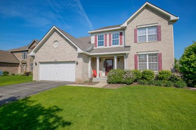 Naperville IL Single Family Home New: $480,000