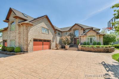 Plainfield Single Family Home For Sale: 13347 Lakeshore Drive