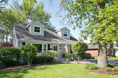 Downers Grove Single Family Home New: 229 Indianapolis Avenue