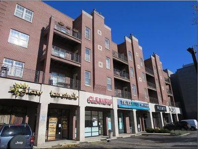 Rental New: 2032 West Division Street #302N