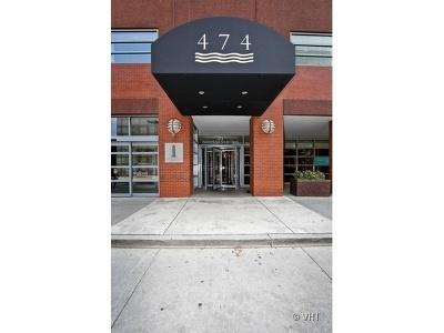 Chicago Condo/Townhouse New: 474 North Lake Shore Drive #6004