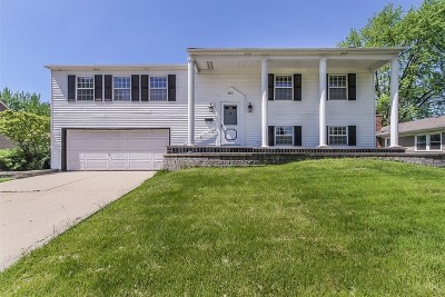 Schaumburg Single Family Home For Sale: 110 Aspen Drive