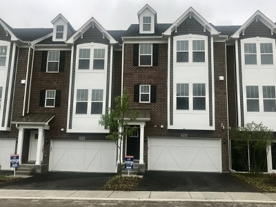 Du Page County Condo/Townhouse New: 940 Coletta Circle