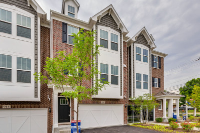 Du Page County Condo/Townhouse New: 946 Coletta Circle