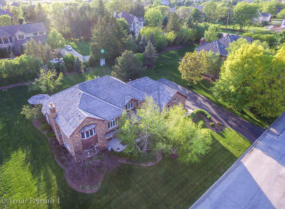 Orland Park Single Family Home New: 15117 Grandview Drive