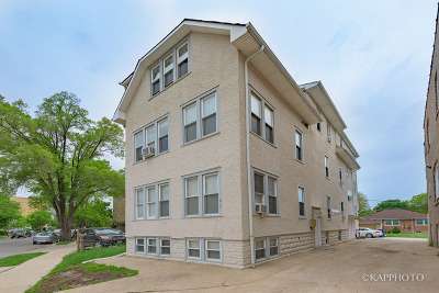 Forest Park Multi Family Home Price Change: 217 Des Plaines Avenue