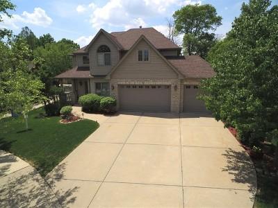 Lemont Single Family Home For Sale: 1014 Salim Place