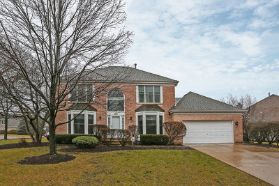 Schaumburg Single Family Home New: 1246 St Claire Place