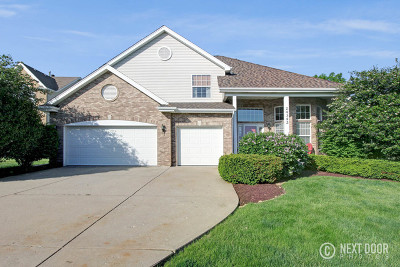 Will County Single Family Home New: 24342 Golden Sunset Drive