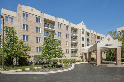 Lombard Condo/Townhouse New: 2250 South Grace Street #102