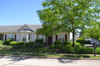 Huntley Condo/Townhouse For Sale: 12257 White Tail Lane
