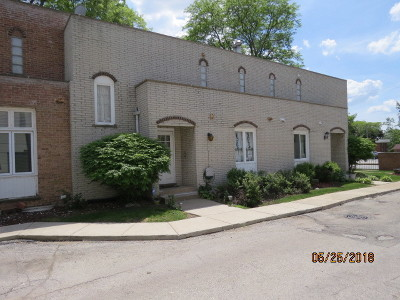 Condo/Townhouse New: 11551 South Western Avenue #D2