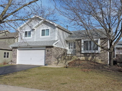 Naperville Rental New: 1595 Lois Ann Drive