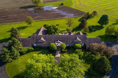 Elgin Single Family Home For Sale: 43w185 Burlington Road