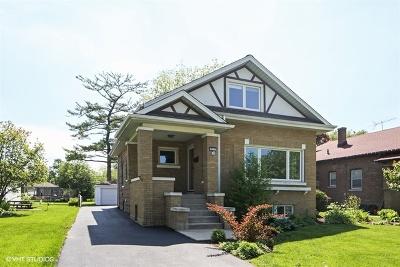 Du Page County Single Family Home New: 253 North Geneva Avenue