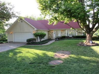 Will County Single Family Home New: 220 Elizabeth Street