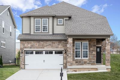 Woodridge Single Family Home New: 2531 Langston Court