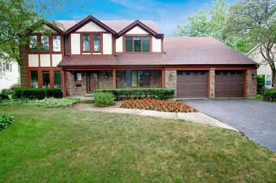 Naperville Single Family Home New: 1324 Royal Saint George Drive