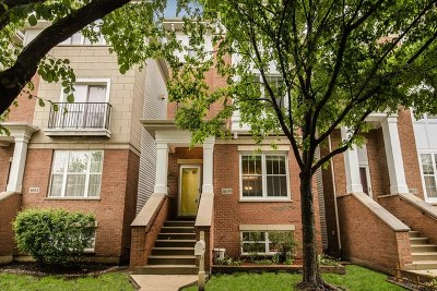 Chicago Single Family Home New: 4659 North Laporte Avenue