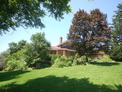 St. Charles Single Family Home For Sale: 6n162 Weber Drive