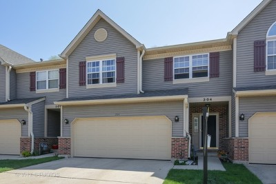 East Dundee Condo/Townhouse New: 204 Dunridge Circle