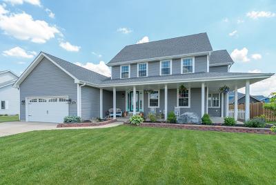 Diamond IL Single Family Home New: $325,000