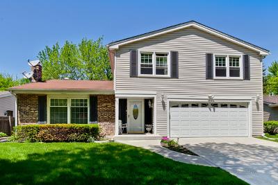 Buffalo Grove Single Family Home New: 874 Saratoga Lane