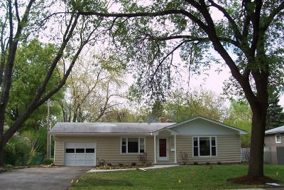 Du Page County Single Family Home New: 241 Elmwood Drive