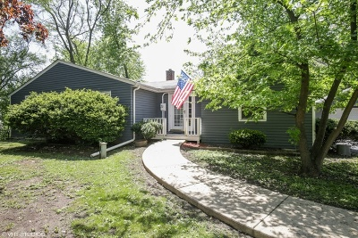 Roselle Single Family Home For Sale: 363 Mensching Road