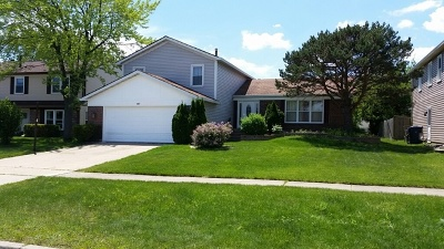 Glendale Heights Single Family Home New: 147 Mill Pond Drive