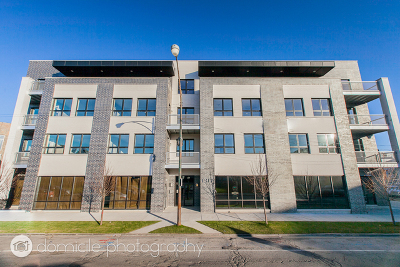 Chicago IL Condo/Townhouse New: $889,000