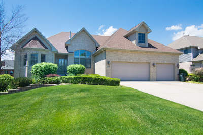 Mokena Single Family Home Contingent: 18704 Summer Gate Court