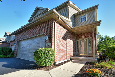 Tinley Park IL Condo/Townhouse New: $252,000