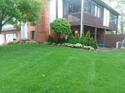 Orland Park Condo/Townhouse New: 9930 Treetop Drive #1