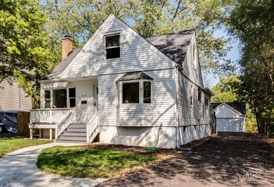 Downers Grove Single Family Home For Sale: 20 2nd Street