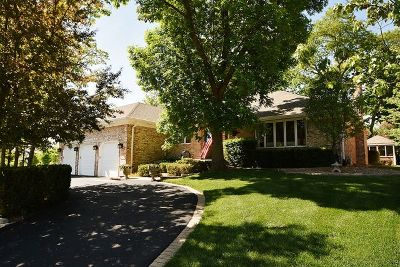 Tinley Park Single Family Home For Sale: 6100 Andres Avenue