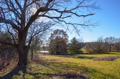 Ogle County Residential Lots & Land For Sale: 209 Woods Drive