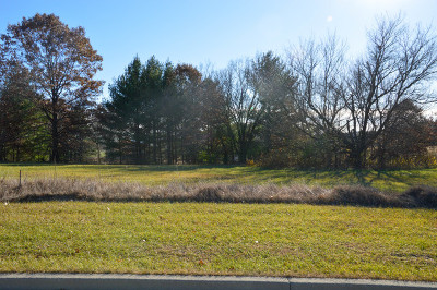 Ogle County Residential Lots & Land For Sale: 211 Woods Drive