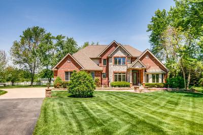 Homer Glen Single Family Home For Sale: 14754 West 147th Street