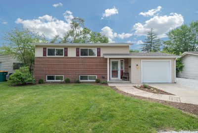 Montgomery Single Family Home Contingent: 13 Curtmar Court