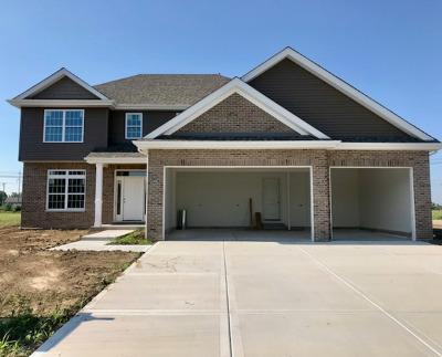 Minooka, Channahon Single Family Home For Sale: 26500 Glacier Court