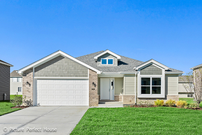 Minooka, Channahon Single Family Home For Sale: 26535 West Orchid Lane