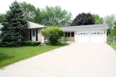Schaumburg Single Family Home For Sale: 24 Bardsey Drive