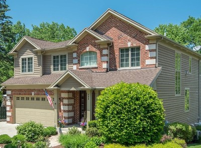 Lisle Single Family Home For Sale: 600 Front Street