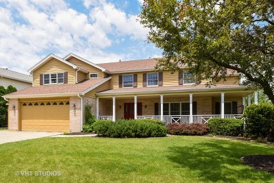 Downers Grove Single Family Home For Sale: 1410 Bradley Court